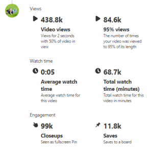 Pinterest Video Pin Stats